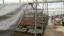Succulent plant greenhouse visits - 19 March 2019